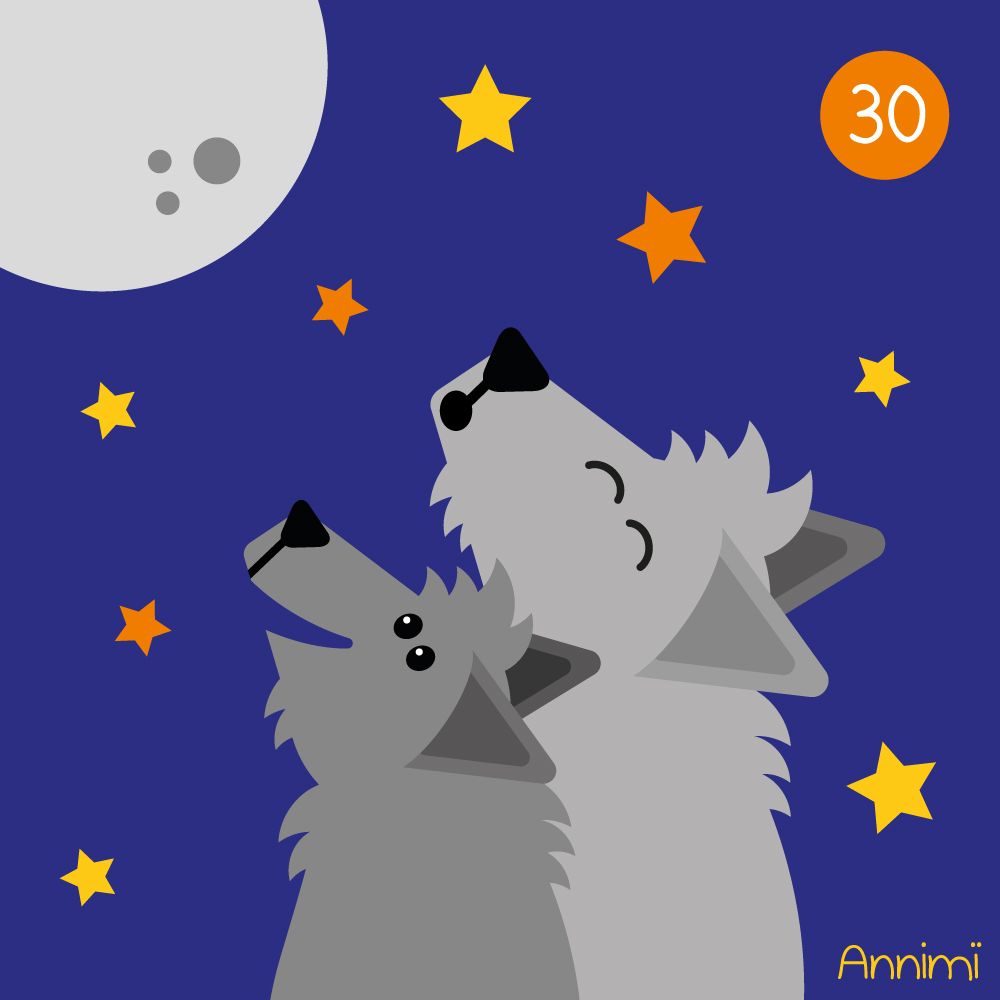 Annimi - Support - Wölfe heulen den Mond an